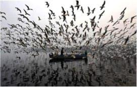 Olón - Pueblo de pescadores