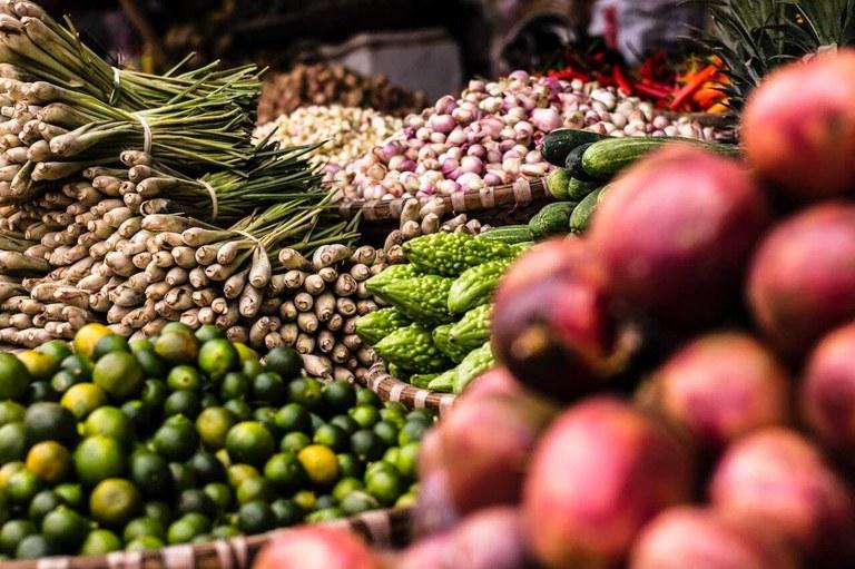 Vegetales Orgánicos - Permacultura y Sostenibilidad en Ecuador