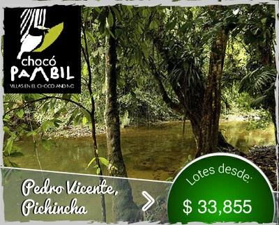 17 ES Choco Pambil Lotes para la venta en pedro vicente pichincha quito ecuador for sale.jpg