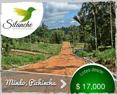 21-ES-Silanche-lots-for-sale-mindo-quito-pichincha-ecuador-para-la-venta.jpg